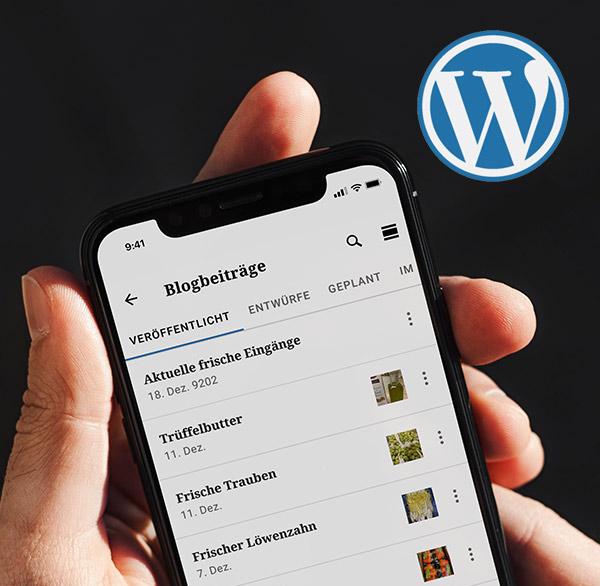 Schnelles Posten mit der WordPress APP